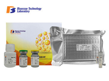 الصين 96 Wells Mouse ELISA Kit Apelin Sandwich 3.11pg / Ml Sensitivity 2-8 ° C Storage مصنع